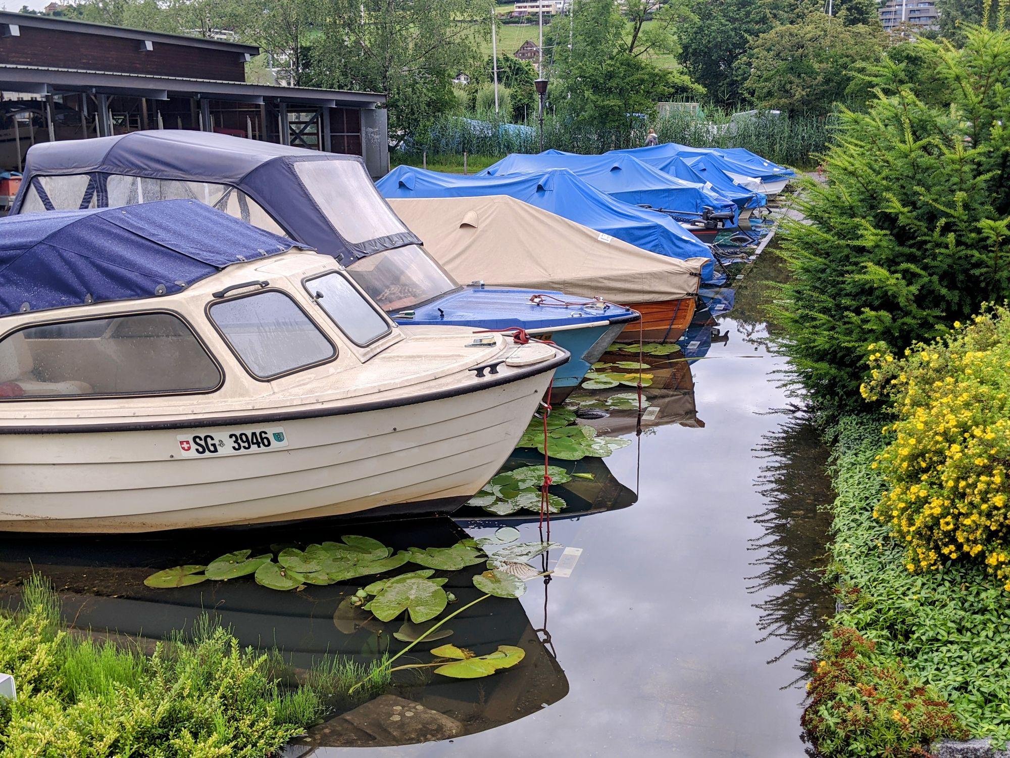 Boote beim Hafen Rheinkies Schmerikon (Foto: Thomas Müller, 8716.ch)