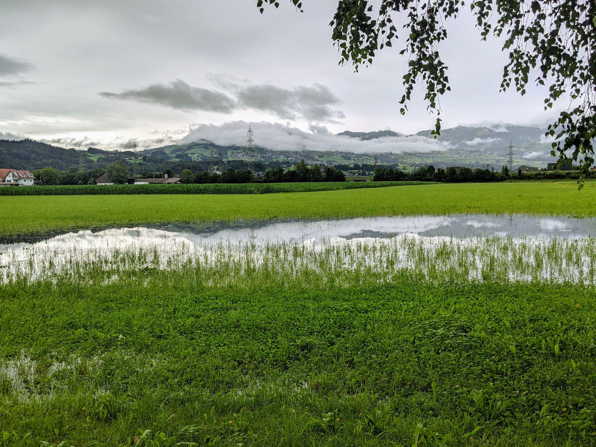 In der Grossen Allmeind in Schmerikon steht das Wasser (Foto: Thomas Müller, 8716.ch)