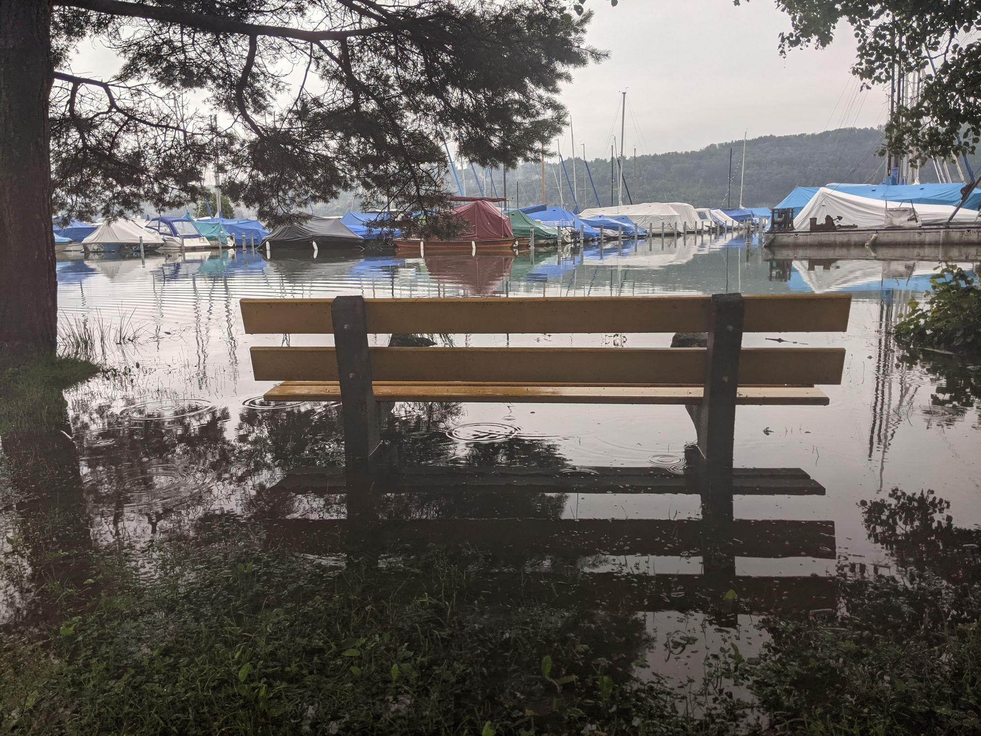 Ruhebänkli vom Verkehrsverein im See anstatt am See (Foto: Thomas Müller, 8716.,ch)
