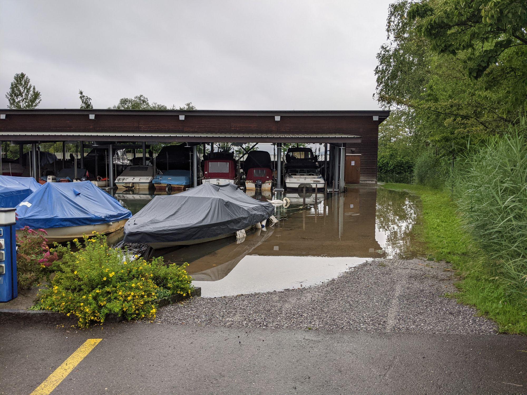 Hochwasser im Hafen Rheinkies in Schmerikon (Foto: Thomas Müller, 8716.ch)